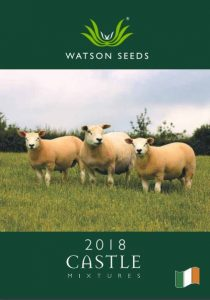 Castle Grass seed 2018