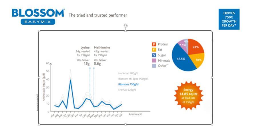 Volac Blosson infographic