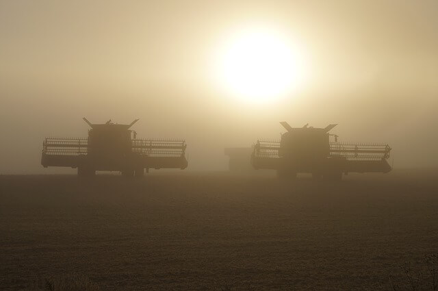 Duo of harvesters at sunset
